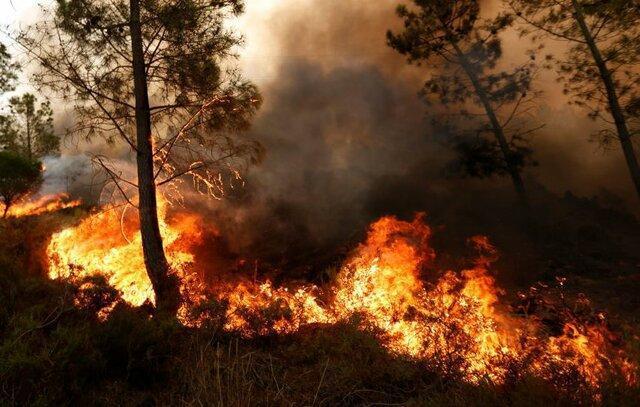 کوه سیاه دشتی در آتش می سوزد ، کوشش برای مهار آتش